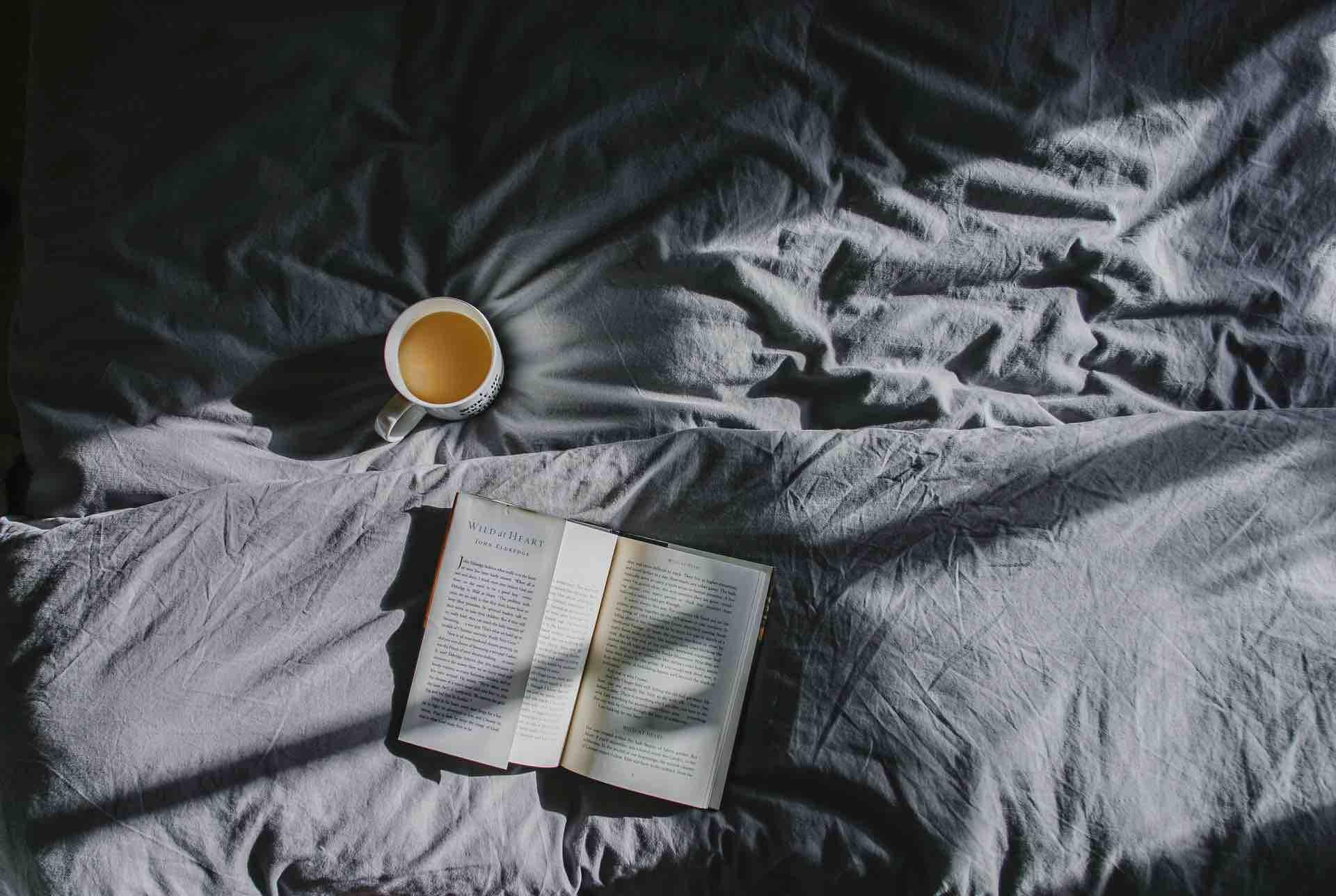 roman café livre lit lecture