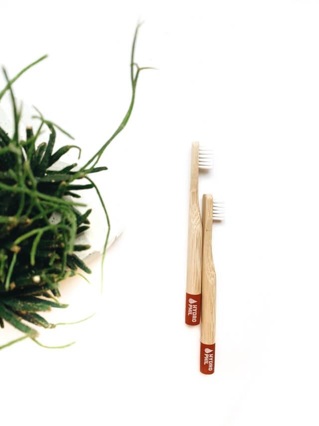 brosse à dents écologique environnement zéro déchet