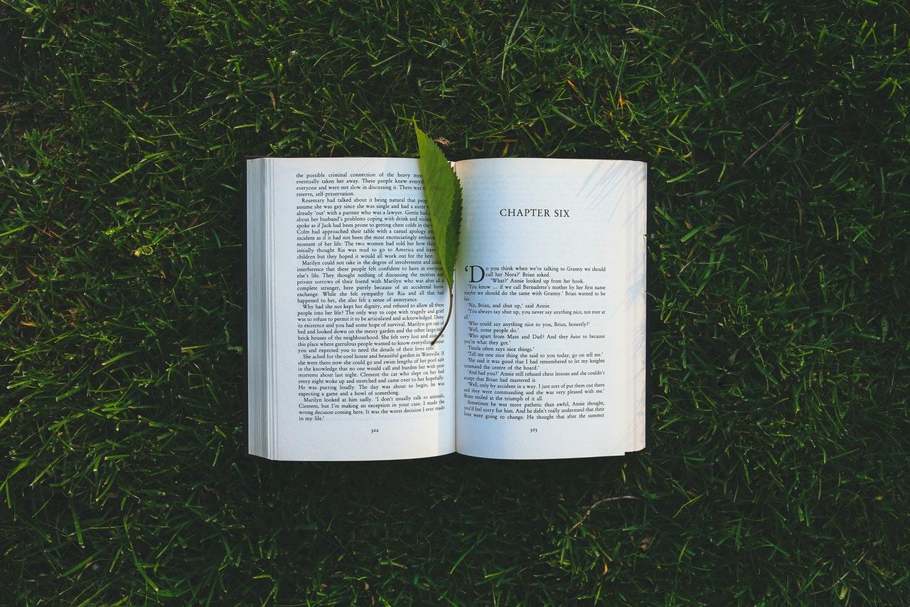 livre ouvert gazon