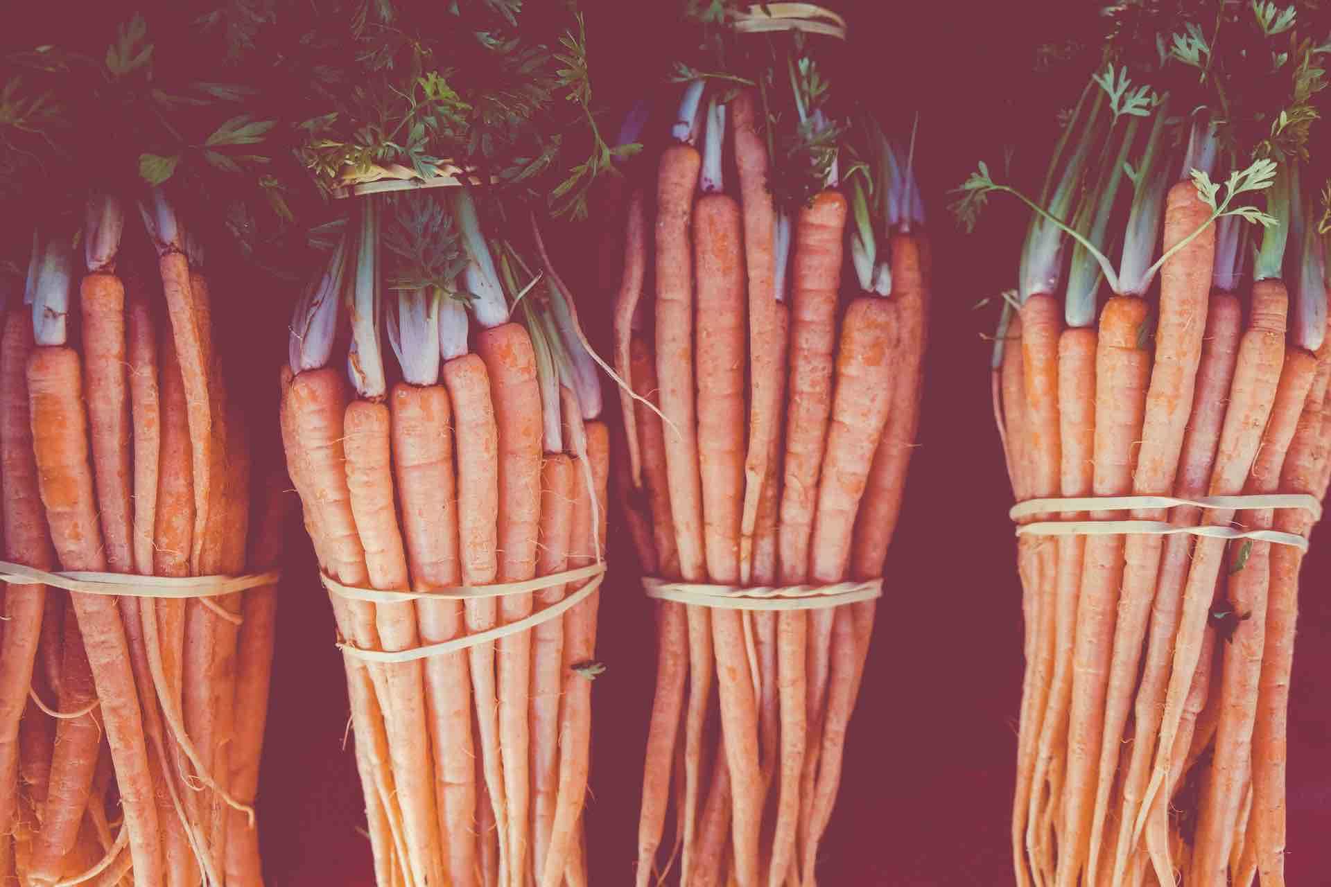 carottes légume orange
