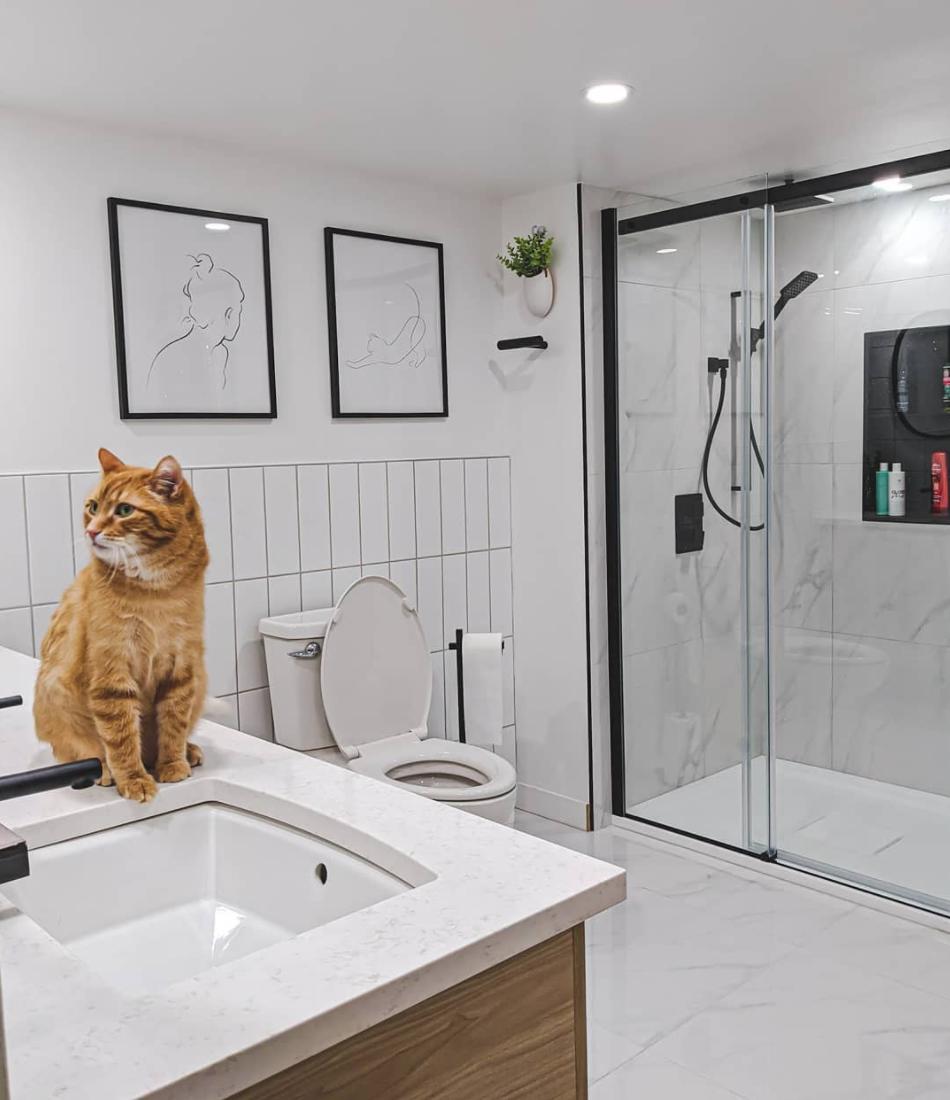 salle de bain camille dg armoires cuisine action
