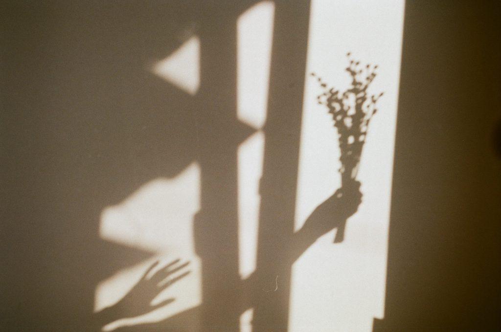 ombre main qui tient fleurs