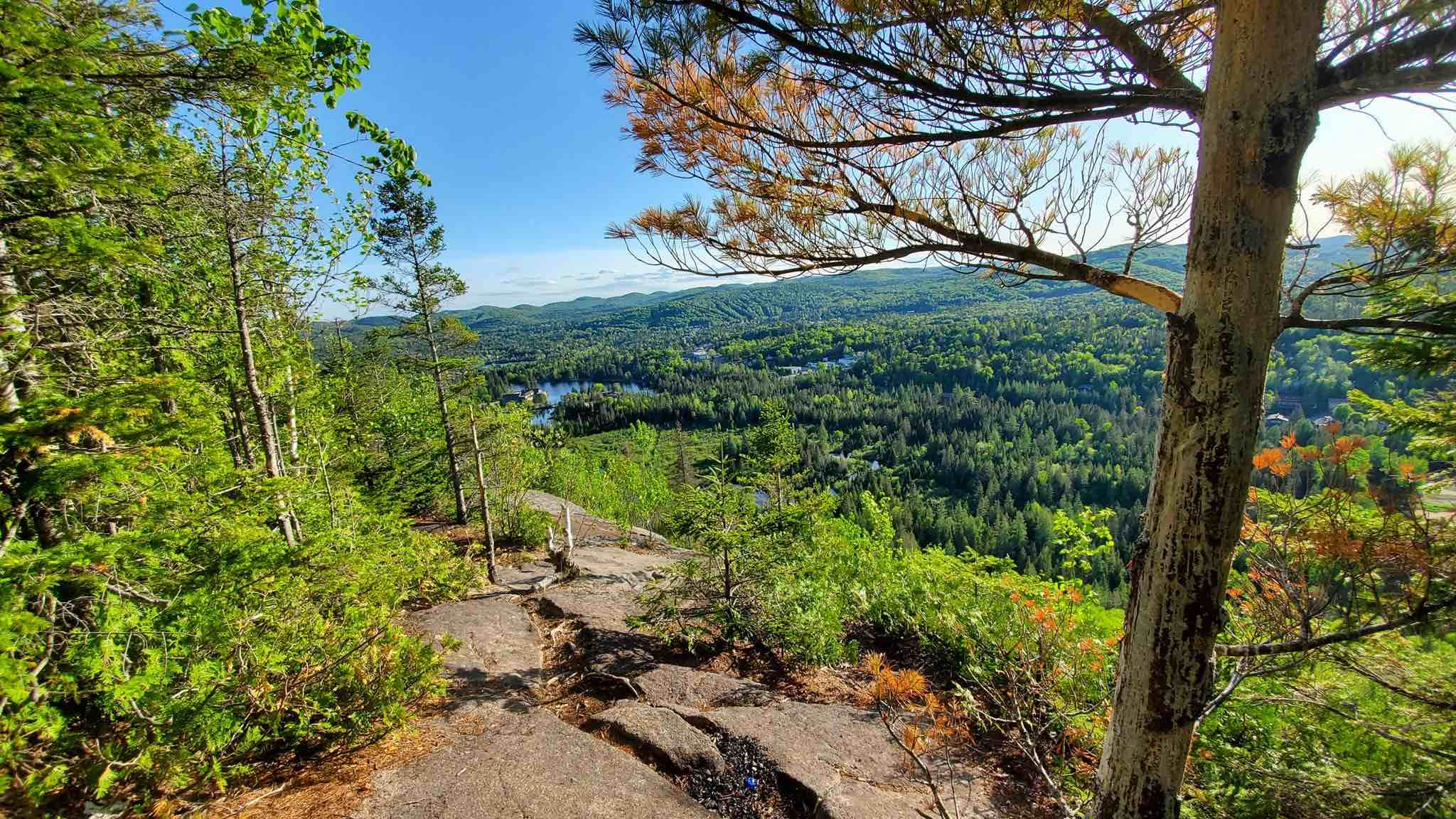Parc nature vue montagne Québec