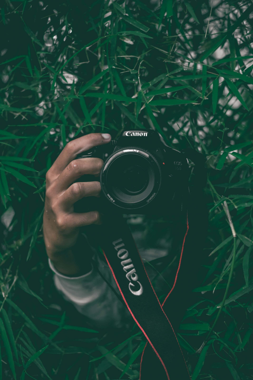 personne cachée dans les plantes tenant une caméra