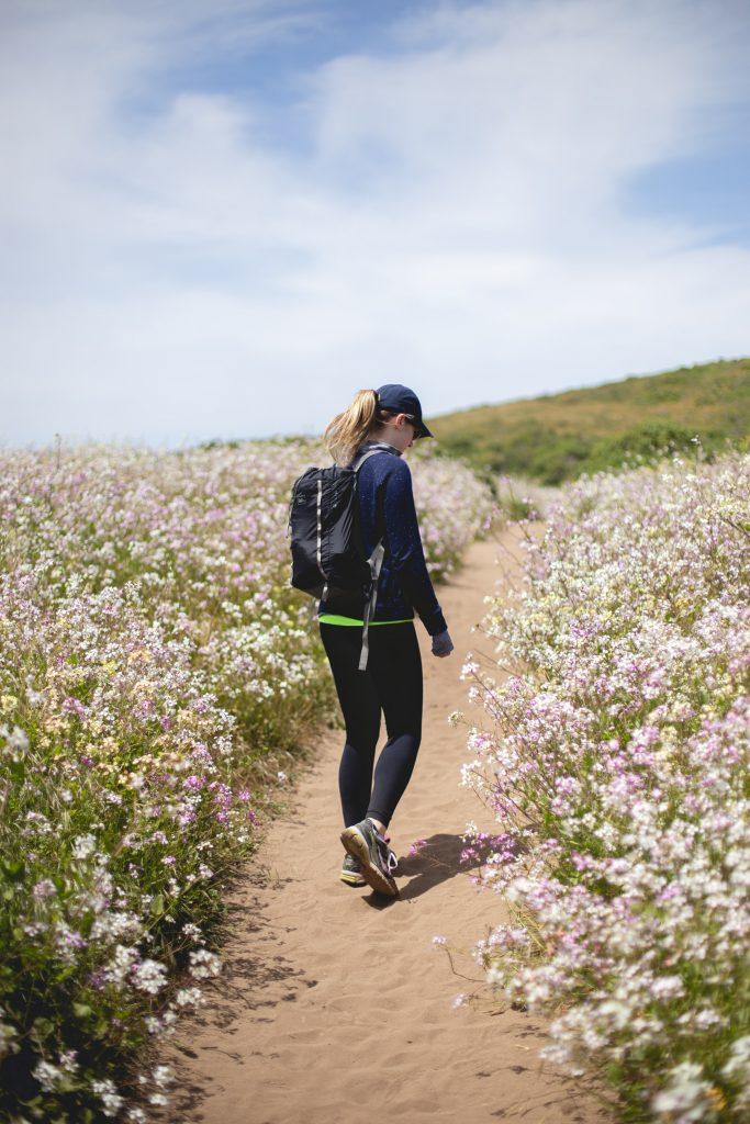 marche dans la nature