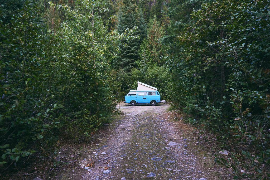Van Westfalia dans la forêt